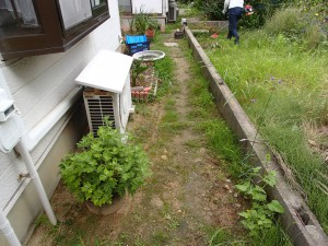 高浜市 草刈り 作業前3